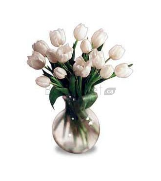 Bouquet de tulipes blanches