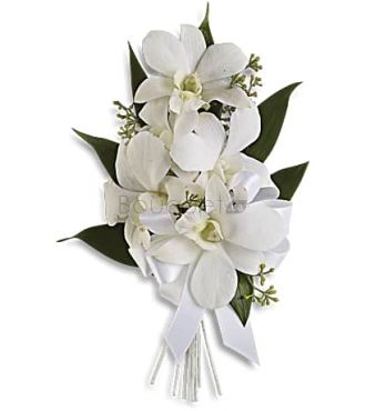 BOUTONNIERE ORCHIDEES ELEGANTE