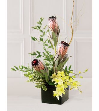 L'arrangement Cascades de couleurs FTD®